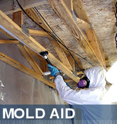 how to detect mold in the air